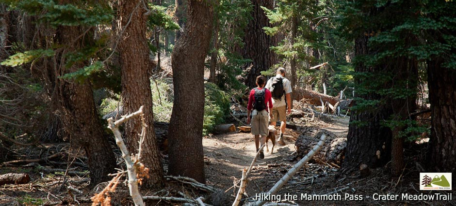 031_Hiking_Mmth_Pass_Crater_Meadow_140612_940_426_c1